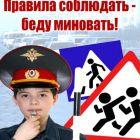 20110823-125024-446.jpg